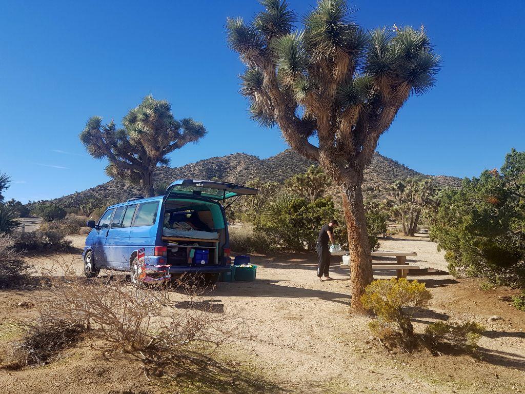 Autokauf in den USA - Vanlife in den USA - mit dem Bulli im Joshua Tree Nationalpark