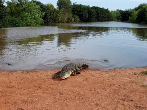 Sehenswürdigkeiten in Broome
