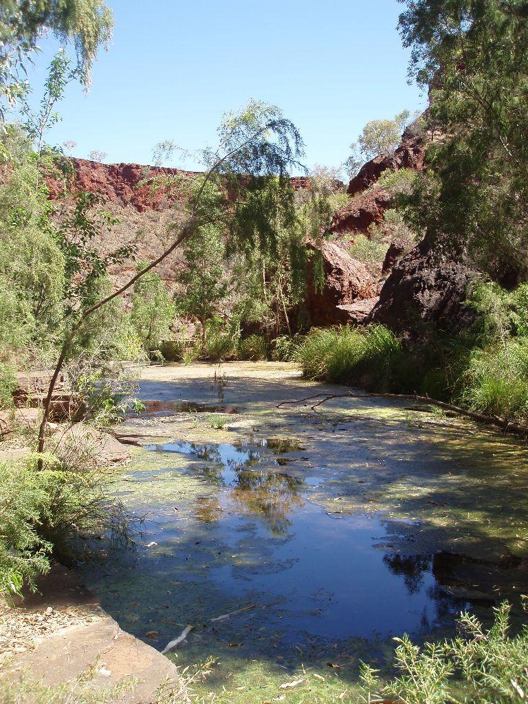 Der Karijini Nationalpark ist ein absolutes Highlight in Western Australia