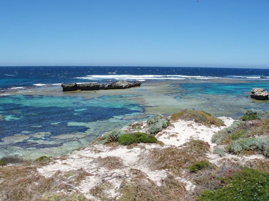 Rottest Island ist eins der Highlights an der Westküste von Australien