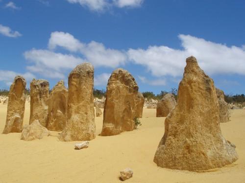 Die Pinnacles sind ein Highlight in Western Australia