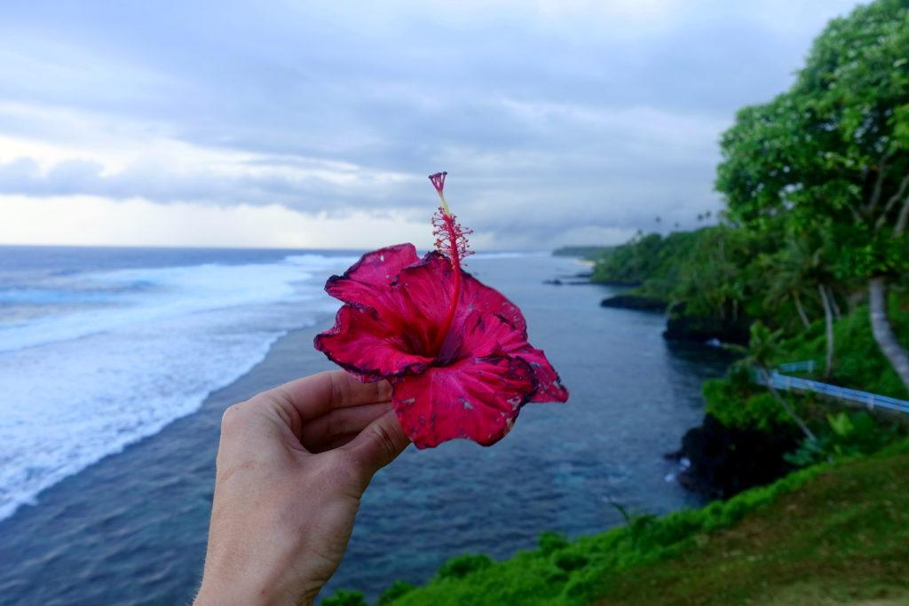 Sehenswürdigkeit in Samoa: der Strand am To-Sua Ocean Trench ist einfach sehr schön - Samoa Reisebericht