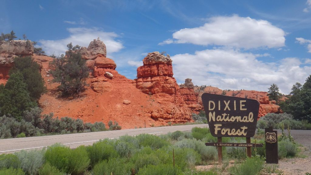 Amerika Reisebericht. Eingang zum Dixie National Forest in Utah, USA. Work Travel Balance.