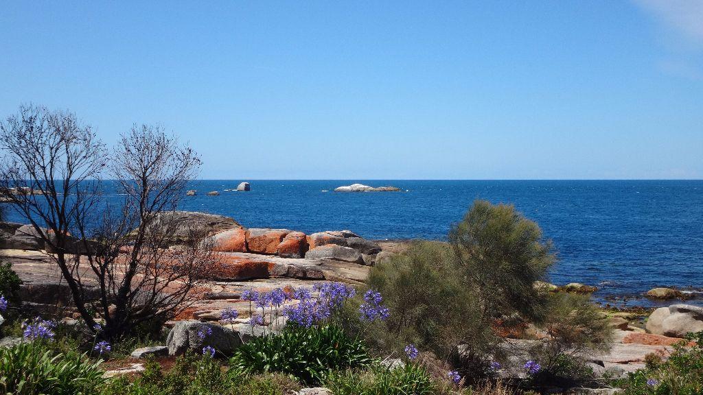 St. Helens in der Nähe des Bay of Fires in Tasmanien  - Tasmanien-Sehenswürdigkeiten auf deiner Tasmanien-Rundreise