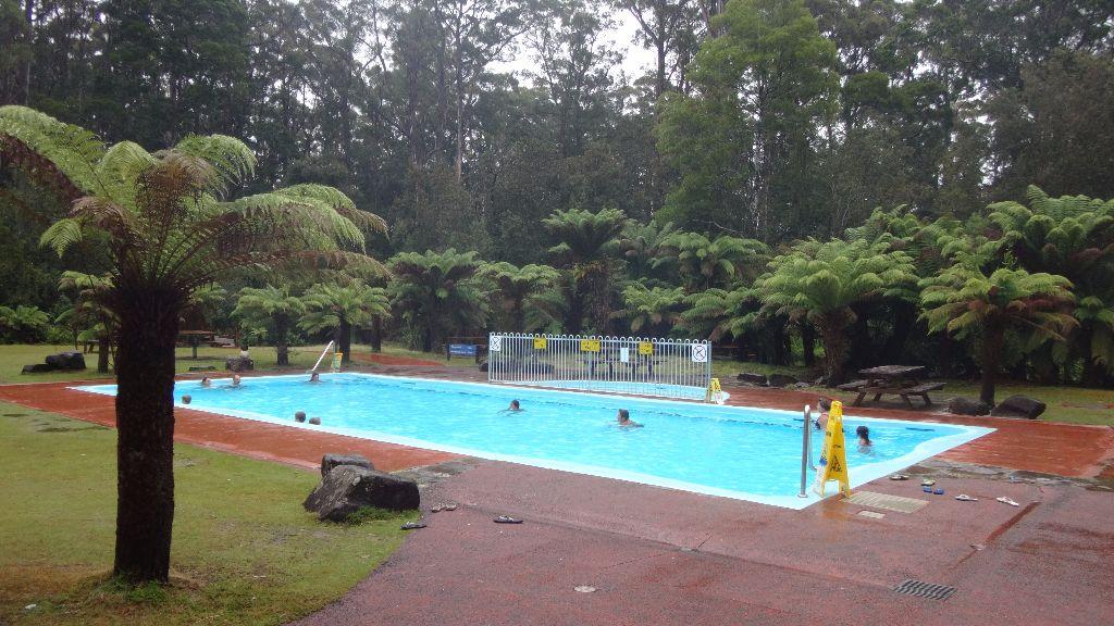 Swimmingpool in den Hastings Thermal Pools - Tasmanien-Sehenswürdigkeiten auf deiner Tasmanien-Rundreise