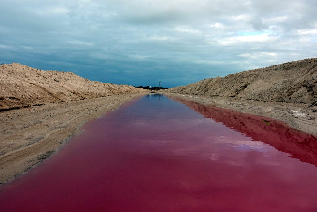Pink Lake in Las Colaradas