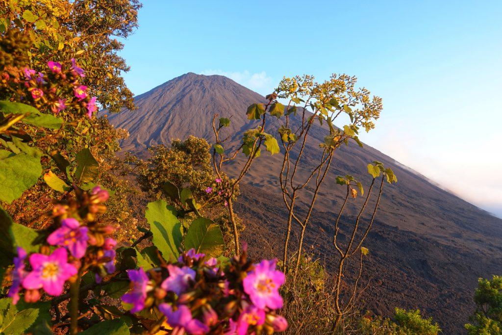 Backpacking in Guatemala - Guatemala Reiseroute & Sehenswürdigkeiten - Vulkan Pacaya