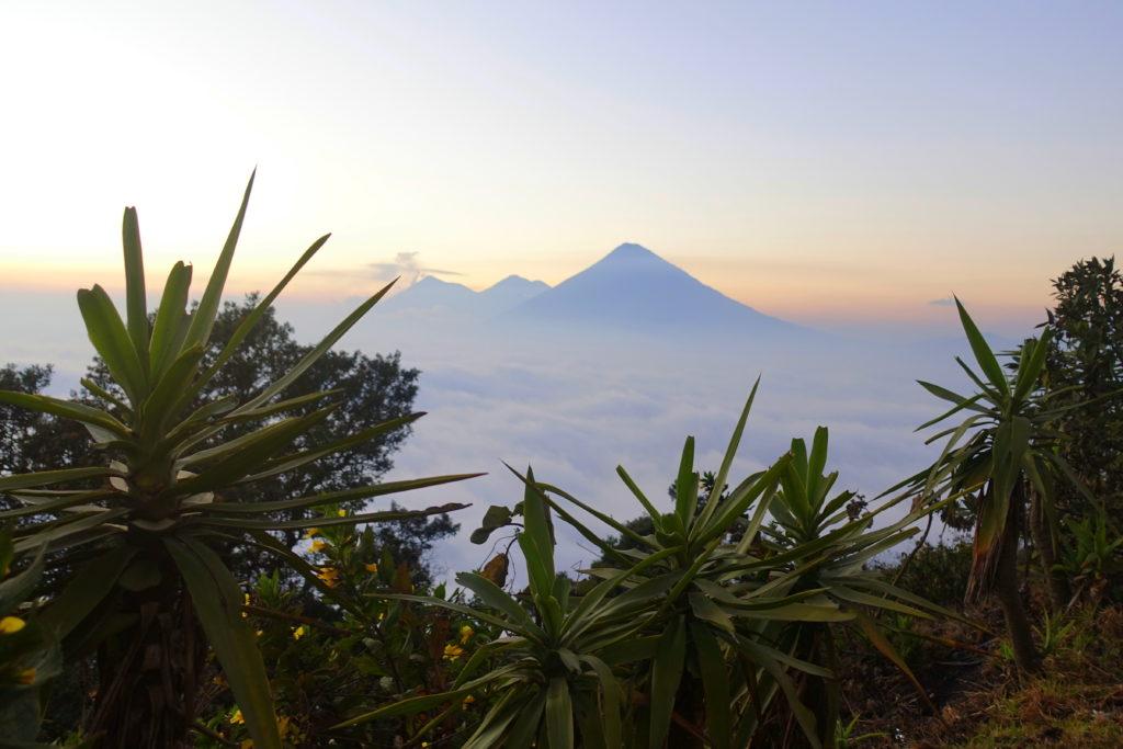 Backpacking in Guatemala - Guatemala Reiseroute & Sehenswürdigkeiten - Blick von Pacaya auf die benachbarten Vulkane
