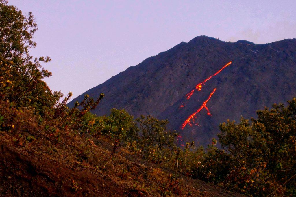 Backpacking in Guatemala - Guatemala Reiseroute & Sehenswürdigkeiten - Lava auf Vulkan Pacaya