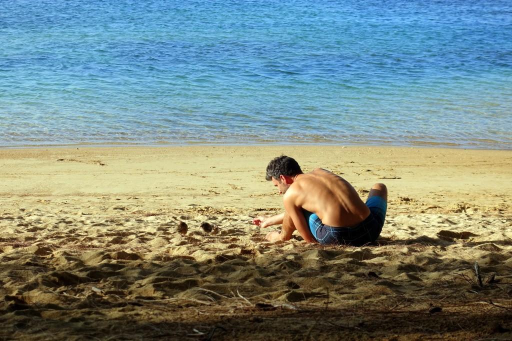 Sehenswürdigkeiten auf Kauai Anini Beach auf Kauai ist ein Tipp für deine Kauai-Reiseroute