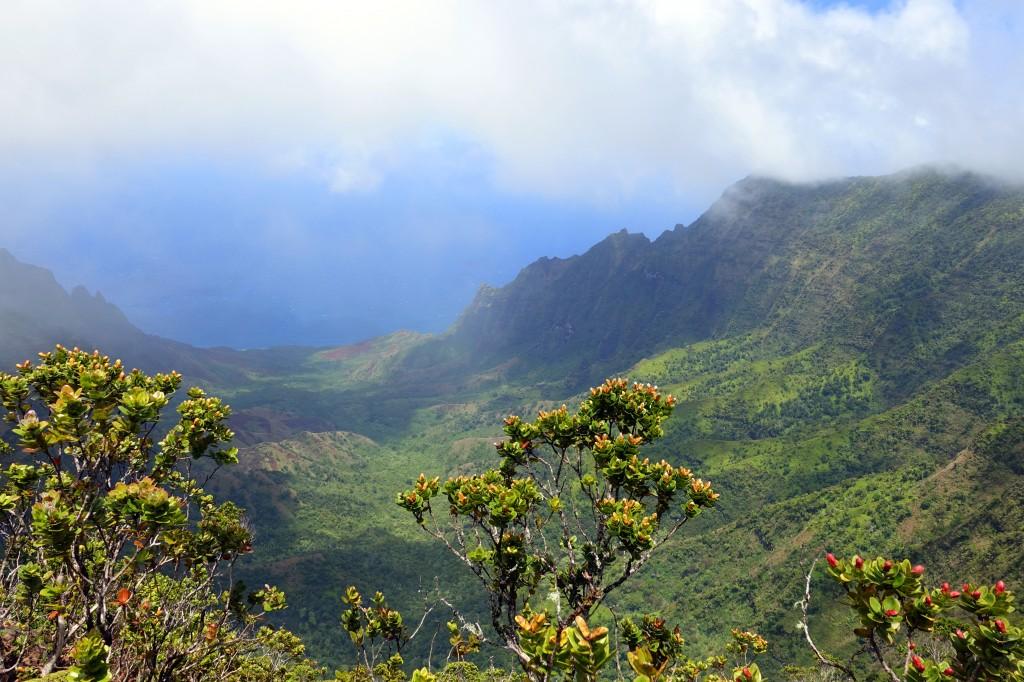 Sehenswürdigkeit auf Kauai - Aussichtspunkt im Kokee Statepark - super Aussicht auf die Napali Coast
