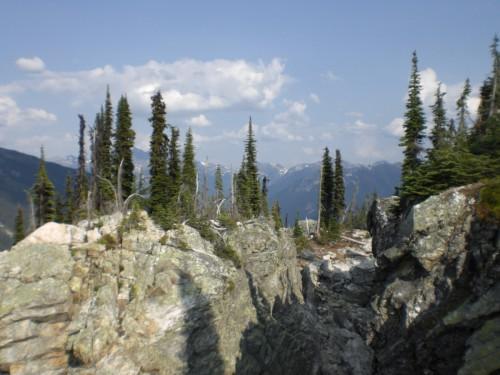 Reisebericht über Backpacking in Kanada. Hier sind wir in Revelstoke im Nationalpark wandern.