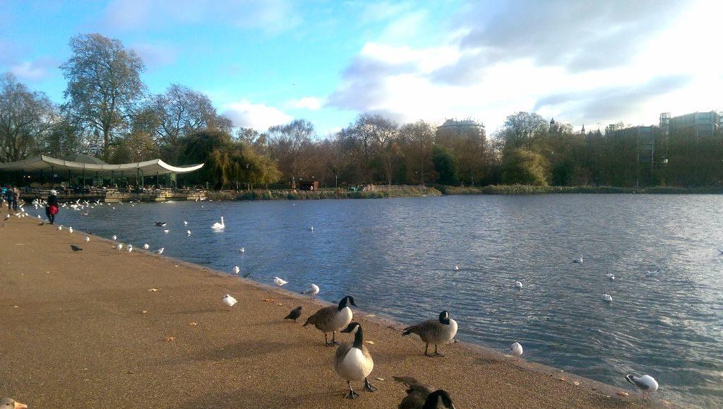 Hyde Park im Winter - Sehenswürdigkeiten in London
