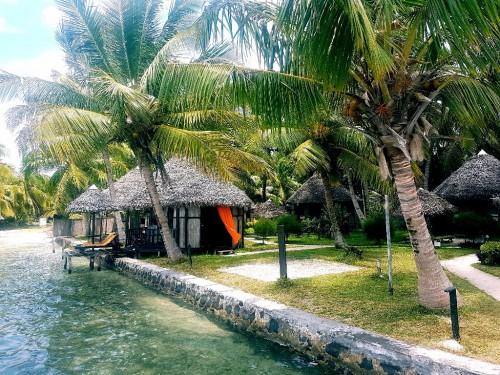 Backpacking Madagaskar - Unterkunft unter Palmen auf Ile aux Nattes