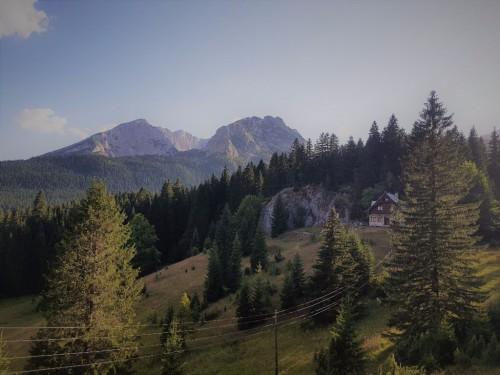 Bäume und Berge im Durmitor Nationalpark