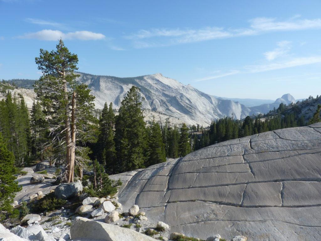 Yosemite Nationalpark auf deiner Kalifornien-Reiseroute