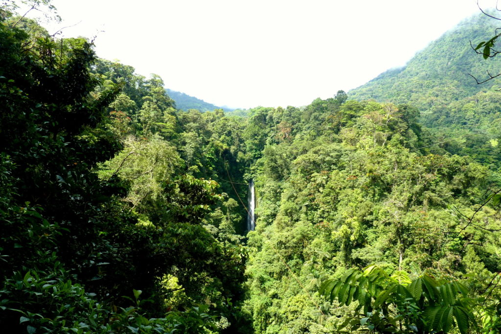 Wasserfall nahe La Fortuna - Panama & Costa Rica in 3 Wochen - Reisebericht über Backpacking in Panama und Costa Rica