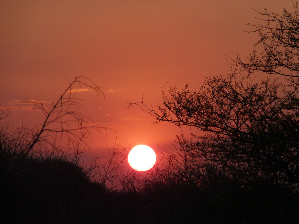 Reisebericht Krüger Nationalpark - Sonnenuntergang im Camp