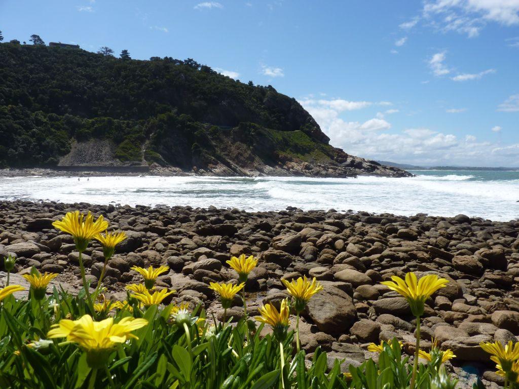 Victoria Bay ist ein weiterer Geheimtipp an der Garden Route und beliebt bei Surfern