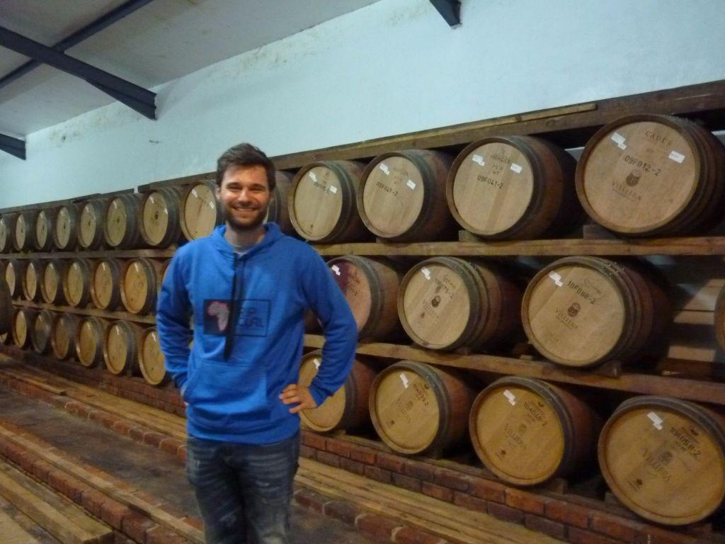 Weintasting-Tour in Kapstadt's Weinregionen