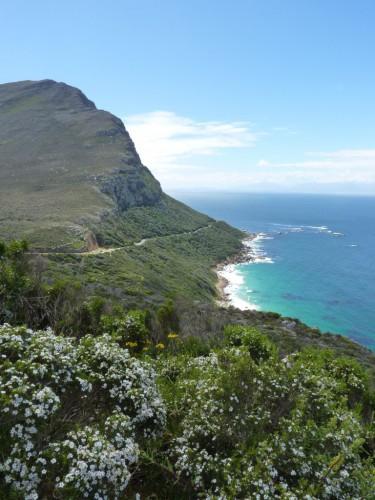 Highlights in Kapstadt - Ausflug zum Kap der guten Hoffnung