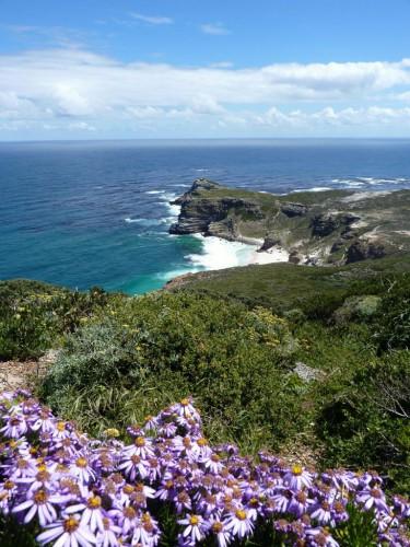 Cape Point Aussicht auf die Küste vom Kap der guten Hoffnung - Kapstadt-Reise
