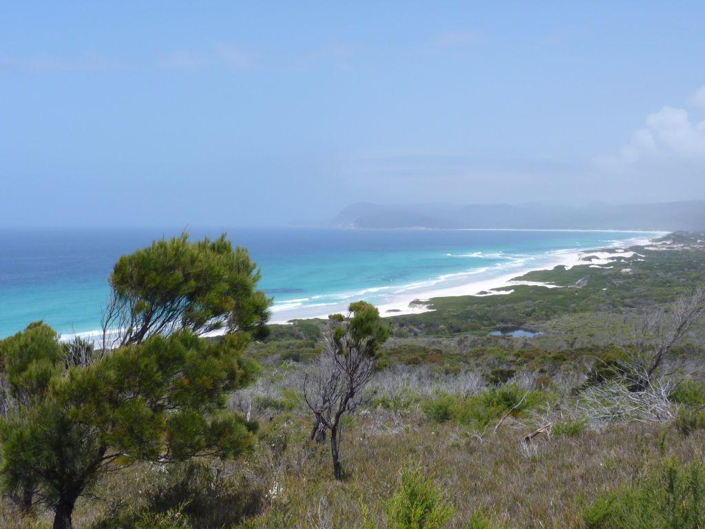 Friendly Beaches an der Ostküste von Tasmanien - Tasmanien-Sehenswürdigkeiten auf deiner Tasmanien-Rundreise