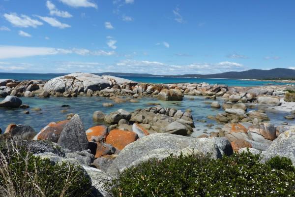 Bay of Fires an der Ostküste Tasmaniens