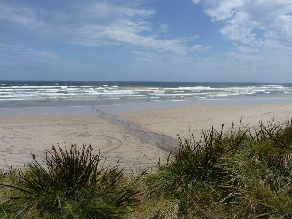 Strand in Strahan an der Westküste von Tasmanien - Tasmanien-Sehenswürdigkeiten auf deiner Tasmanien-Rundreise