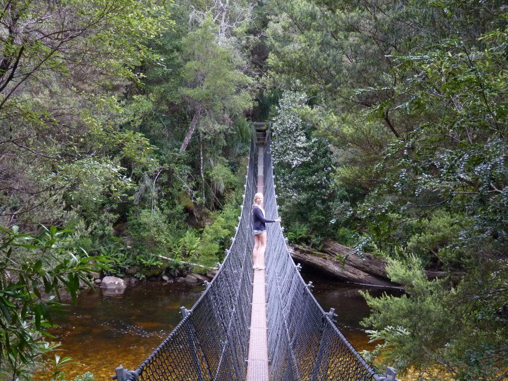 Walk über eine Hängebrücke auf dem Weg von Queenstown in Tasmanien - Tasmanien-Sehenswürdigkeiten auf deiner Tasmanien-Rundreise