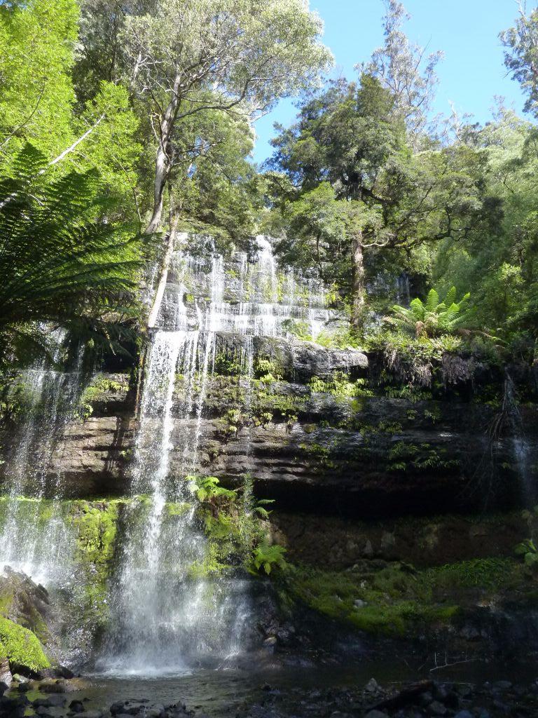 Tasmanien-Highlights: Mount Field Nationalpark mit seinen beeindruckenden Wasserfällen - Tasmanien-Sehenswürdigkeiten auf deiner Tasmanien-Rundreise